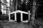 Visitor rain shelter in style of Haida house