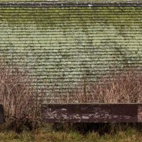 Angler's Roof