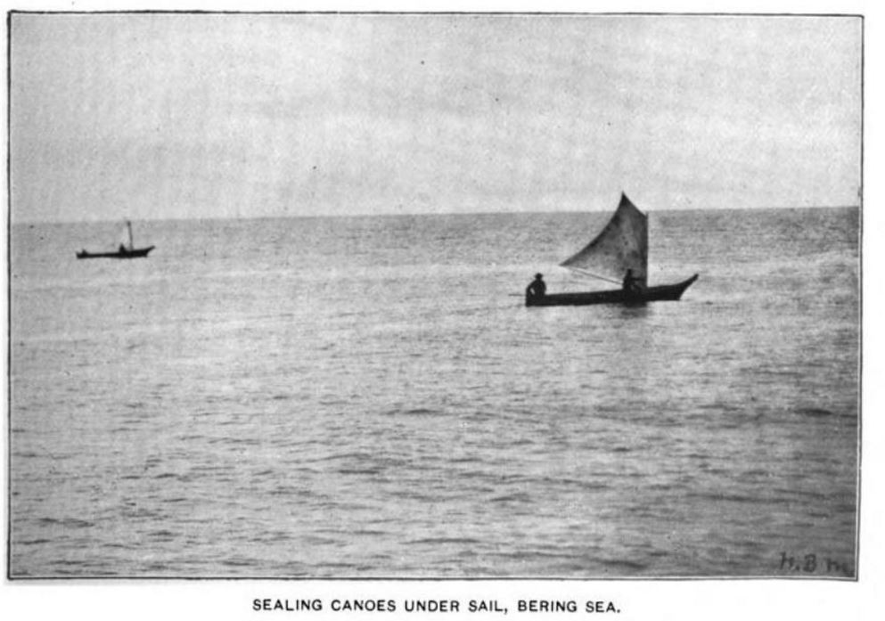 canoes under sail