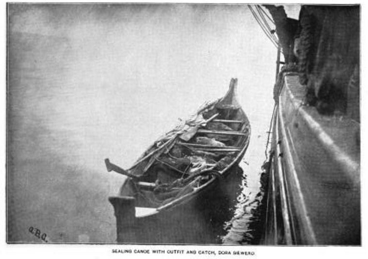 sealing canoe